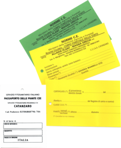 nuove-certificazioni